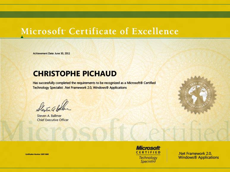 Microsoft Certificate Of Excellence Do It Matters Services Vs