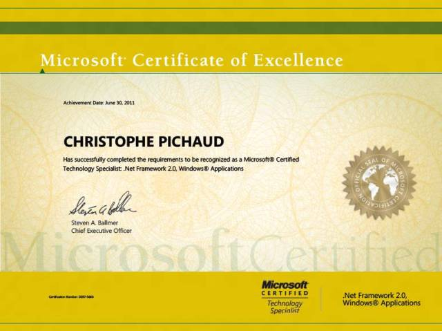 Microsoft Certificate of Excellence Do it matters Services – Microsoft Certificate of Excellence
